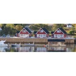 Frovåg Havfiske Senja , Troms
